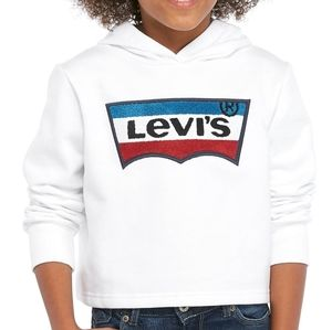 Levi's NWT chenille patch logo long sleeve hoodie